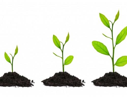 Какво е обгрижване на клиенти – Lead Nurturing